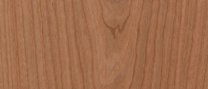 Amerikanisch Kirschbaum natur