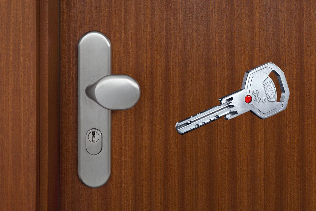 Wohnungseingangstür Knopfgarnitur